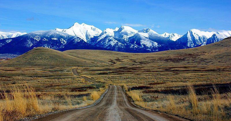 Montana Ballot Collection Law